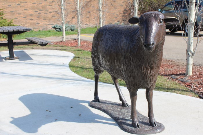 Olive the sheep statue